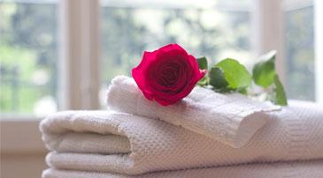 Higiene y desinfección en Centros de Salud y belleza